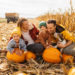 5 Tips For Finding The Best Pumpkin